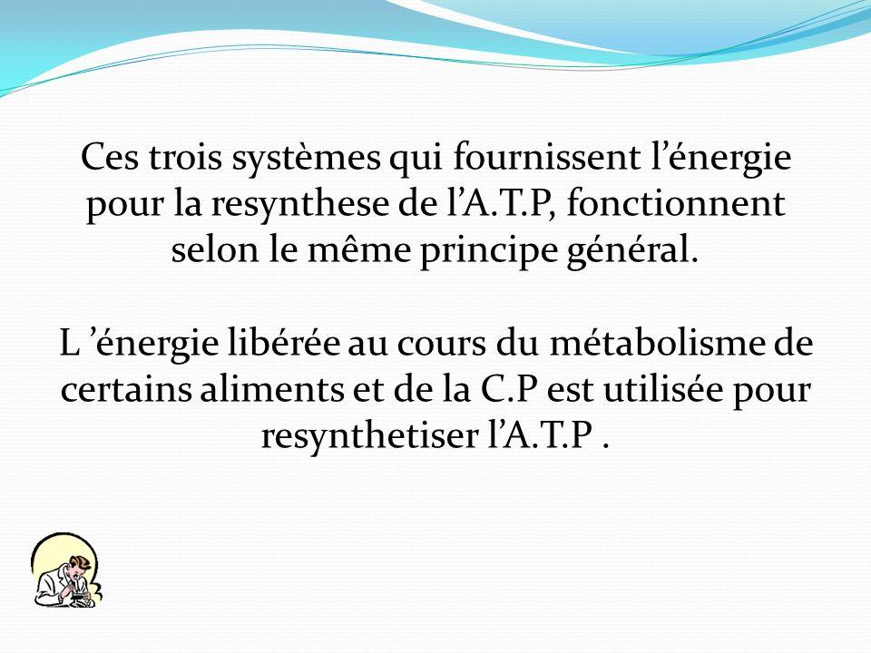 Ces trois systèmes qui fournissent lénergie pour la resynthese de lA.T.P, fonctionnent selon le même principe général. L énergie libérée au cours du m