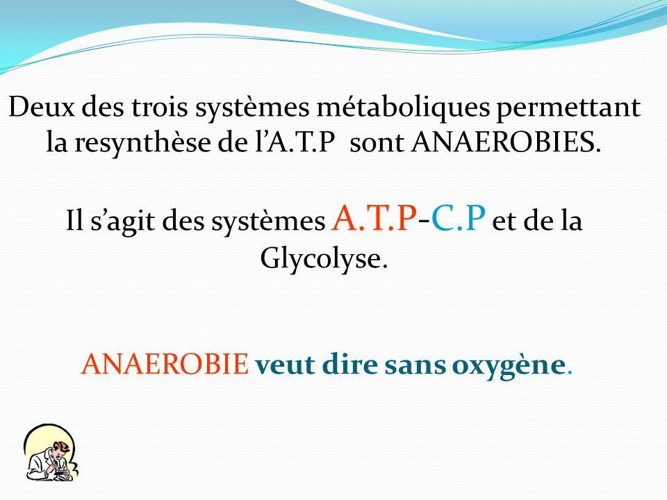 Deux des trois systèmes métaboliques permettant la resynthèse de lA.T.P sont ANAEROBIES. Il sagit des systèmes A.T.P-C.P et de la Glycolyse. ANAEROBIE