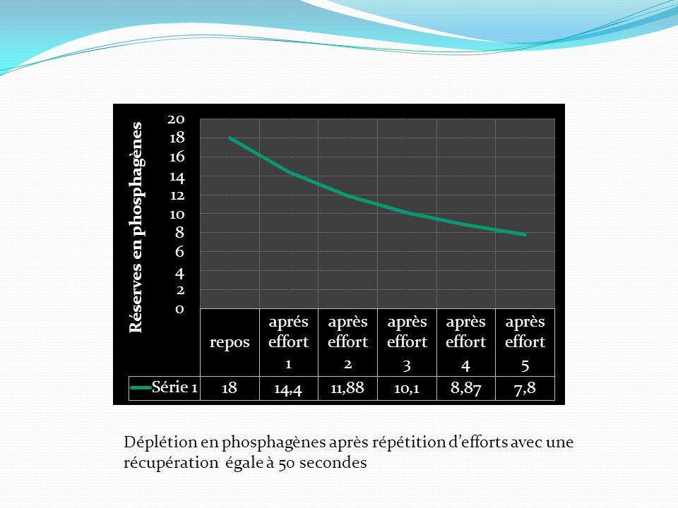 Déplétion en phosphagènes après répétition defforts avec une récupération égale à 50 secondes