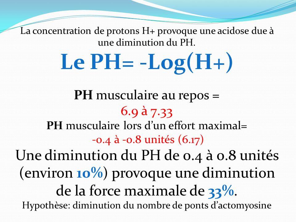 La concentration de protons H+ provoque une acidose due à une diminution du PH. Le PH= -Log(H+) PH musculaire au repos = 6.9 à 7.33 PH musculaire lors