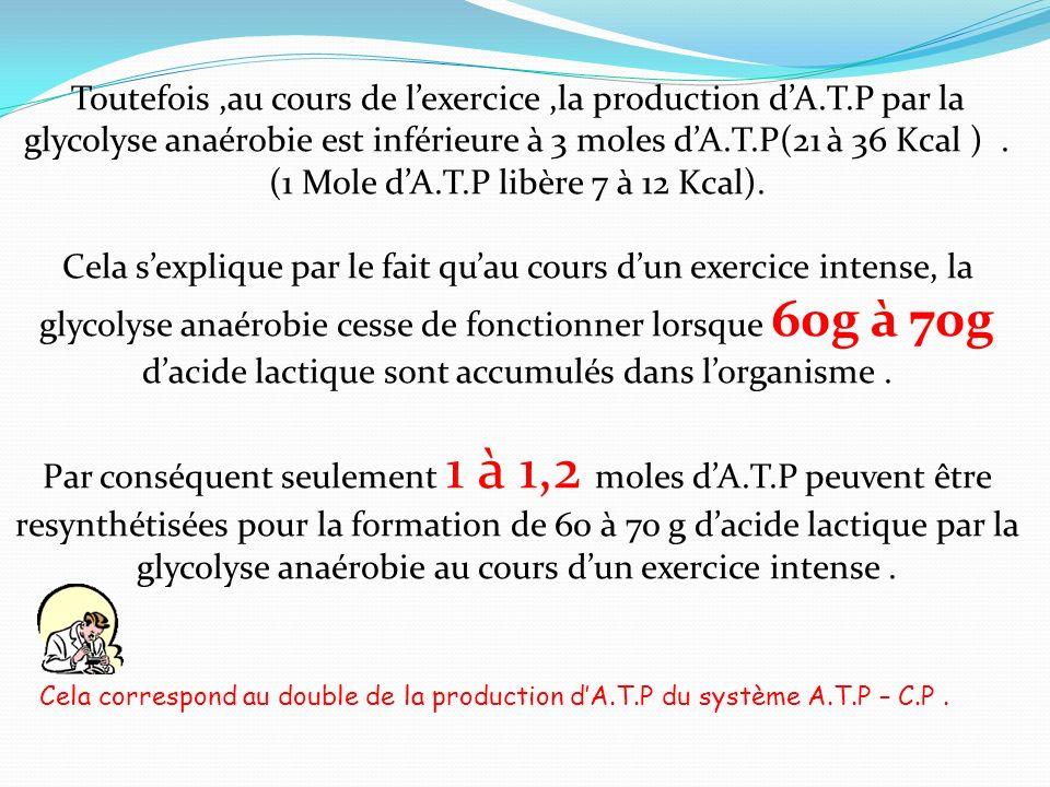 Toutefois,au cours de lexercice,la production dA.T.P par la glycolyse anaérobie est inférieure à 3 moles dA.T.P(21 à 36 Kcal ). (1 Mole dA.T.P libère