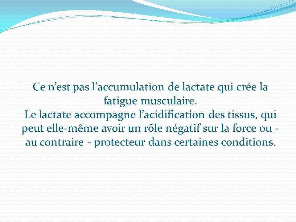 Ce nest pas laccumulation de lactate qui crée la fatigue musculaire. Le lactate accompagne lacidification des tissus, qui peut elle-même avoir un rôle