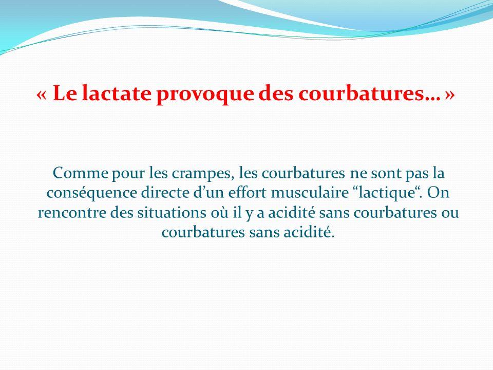 « Le lactate provoque des courbatures… » Comme pour les crampes, les courbatures ne sont pas la conséquence directe dun effort musculaire lactique. On