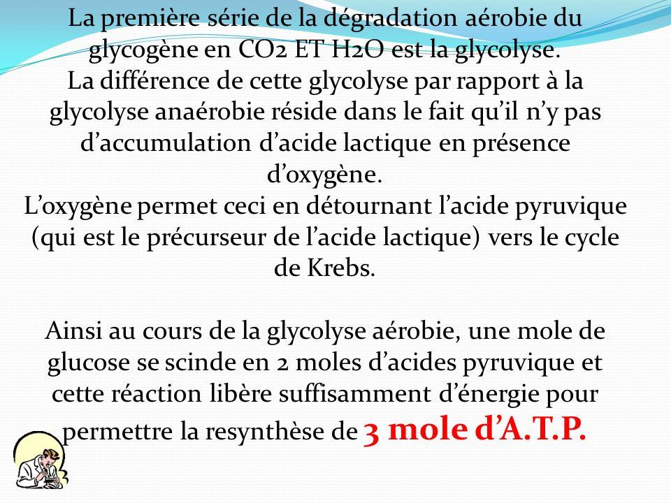 La première série de la dégradation aérobie du glycogène en CO2 ET H2O est la glycolyse. La différence de cette glycolyse par rapport à la glycolyse a