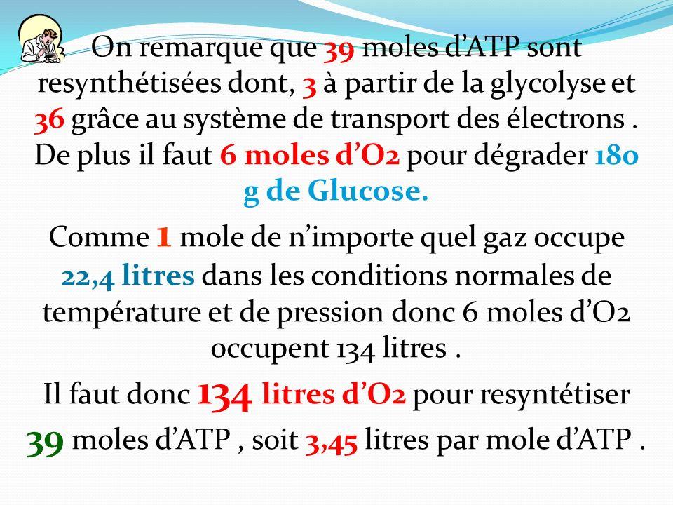 On remarque que 39 moles dATP sont resynthétisées dont, 3 à partir de la glycolyse et 36 grâce au système de transport des électrons. De plus il faut