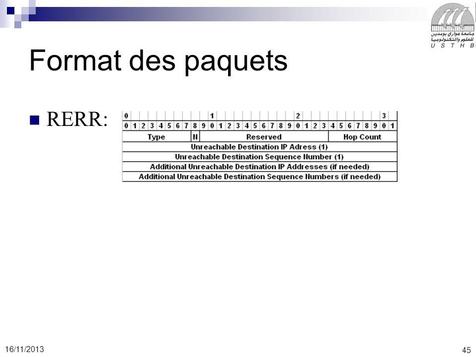 45 16/11/2013 RERR: Format des paquets