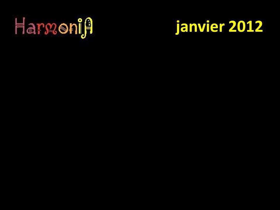 Sondage effectué auprès des membres de la chorale Harmonia de Saint Pavace à propos du site WEB :