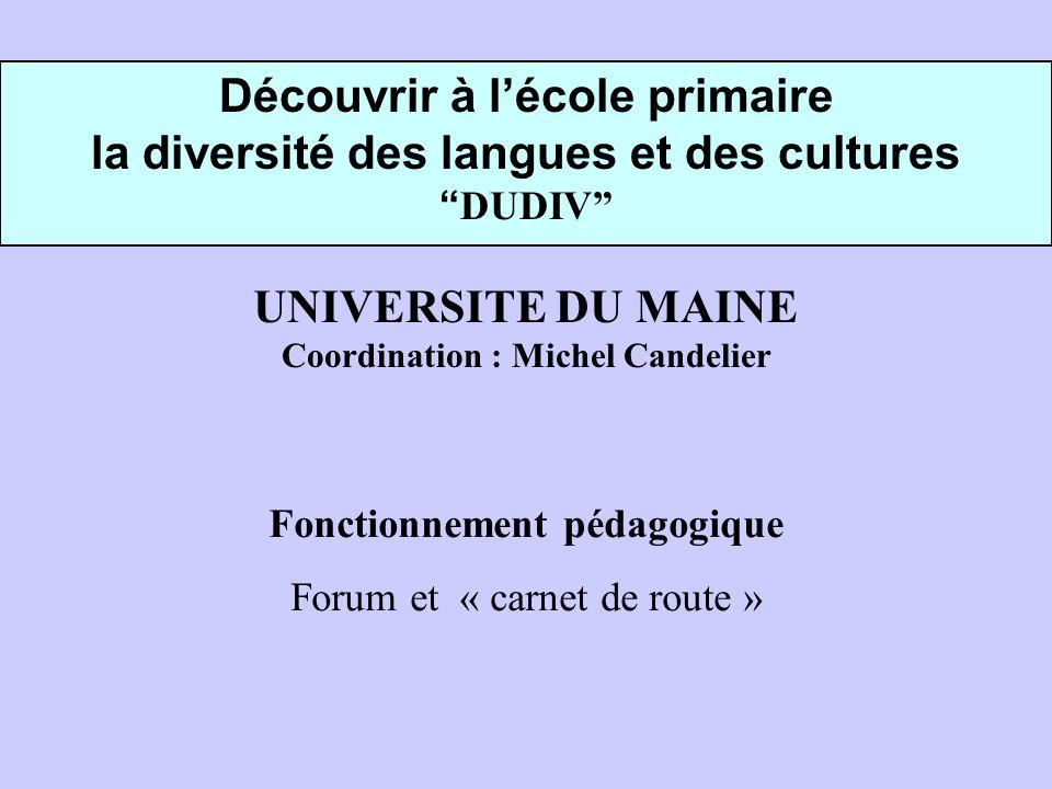 Découvrir à lécole primaire la diversité des langues et des cultures DUDIV UNIVERSITE DU MAINE Coordination : Michel Candelier Fonctionnement pédagogique Forum et « carnet de route »