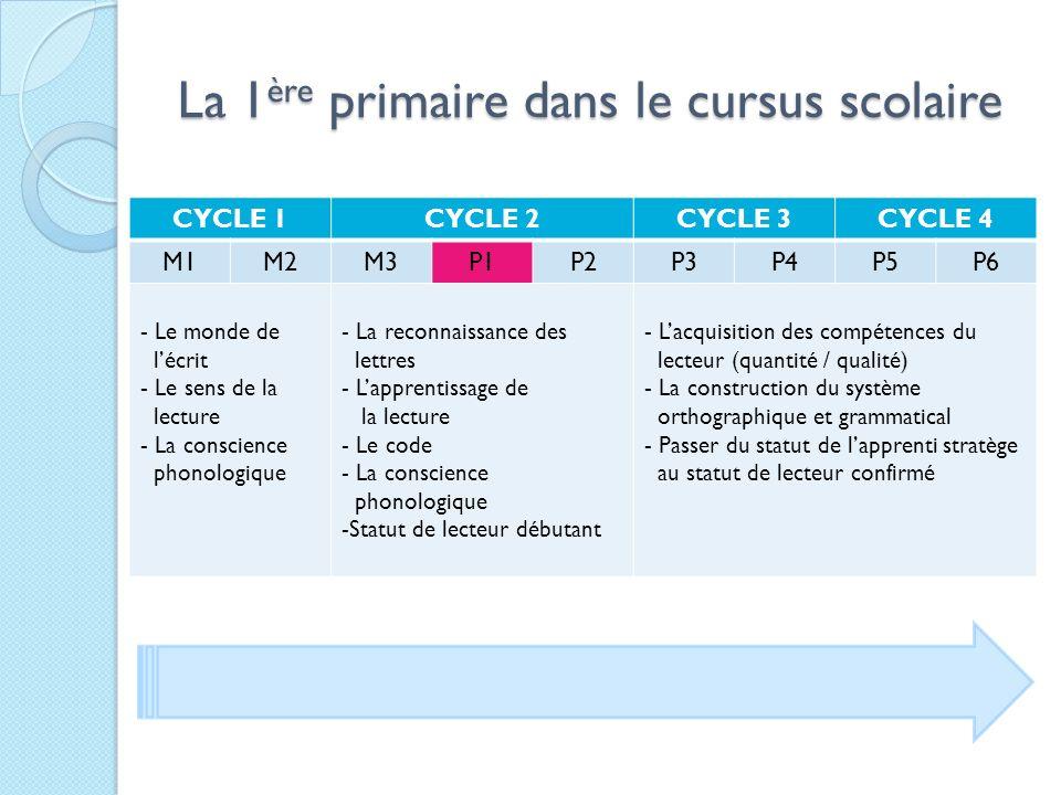 La 1ère primaire dans le cursus scolaire La 1 ère primaire dans le cursus scolaire CYCLE 1CYCLE 2CYCLE 3CYCLE 4 M1M2M3P1P2P3P4P5P6 - Le monde de lécri