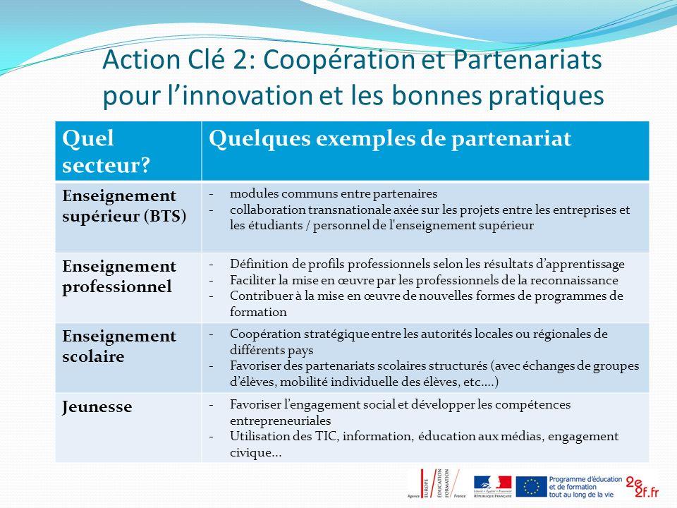 Action Clé 2: Coopération et Partenariats pour linnovation et les bonnes pratiques Quel secteur? Quelques exemples de partenariat Enseignement supérie