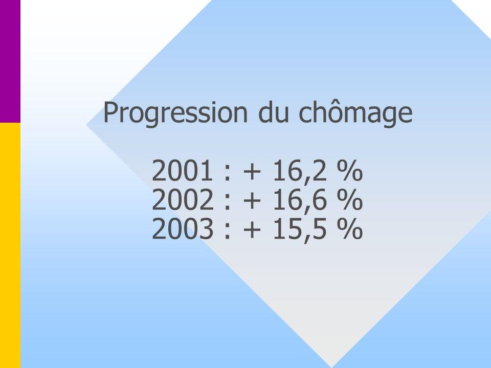 Progression du chômage 2001 : + 16,2 % 2002 : + 16,6 % 2003 : + 15,5 %