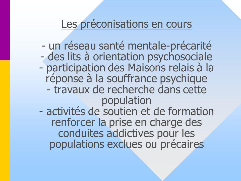 Les préconisations en cours - un réseau santé mentale-précarité - des lits à orientation psychosociale - participation des Maisons relais à la réponse à la souffrance psychique - travaux de recherche dans cette population - activités de soutien et de formation renforcer la prise en charge des conduites addictives pour les populations exclues ou précaires