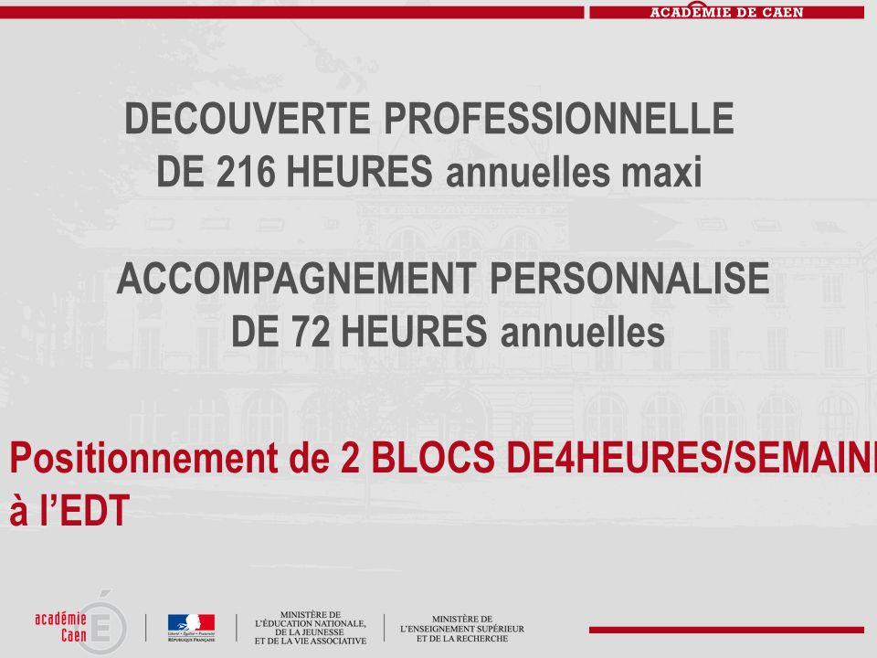 DECOUVERTE PROFESSIONNELLE DE 216 HEURES annuelles maxi ACCOMPAGNEMENT PERSONNALISE DE 72 HEURES annuelles Positionnement de 2 BLOCS DE4HEURES/SEMAINE