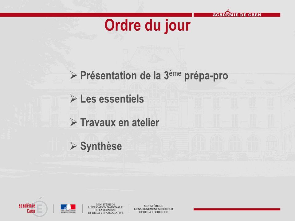 3 ème Préparatoire aux formations professionnelles 3 ème Prépa-Pro Une évolution de la 3 ème à découverte professionnelle module 6H