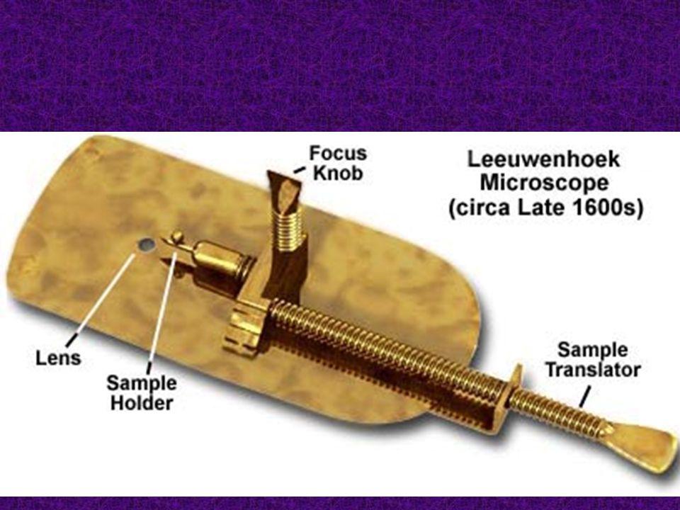 Les parties du microscope Tube optique objectif 4 x objectif 40 x valets diaphragme lampe Oculaire (15 x) objectif 10 x potence platine Vis macrométrique Vis micrométrique base révolver