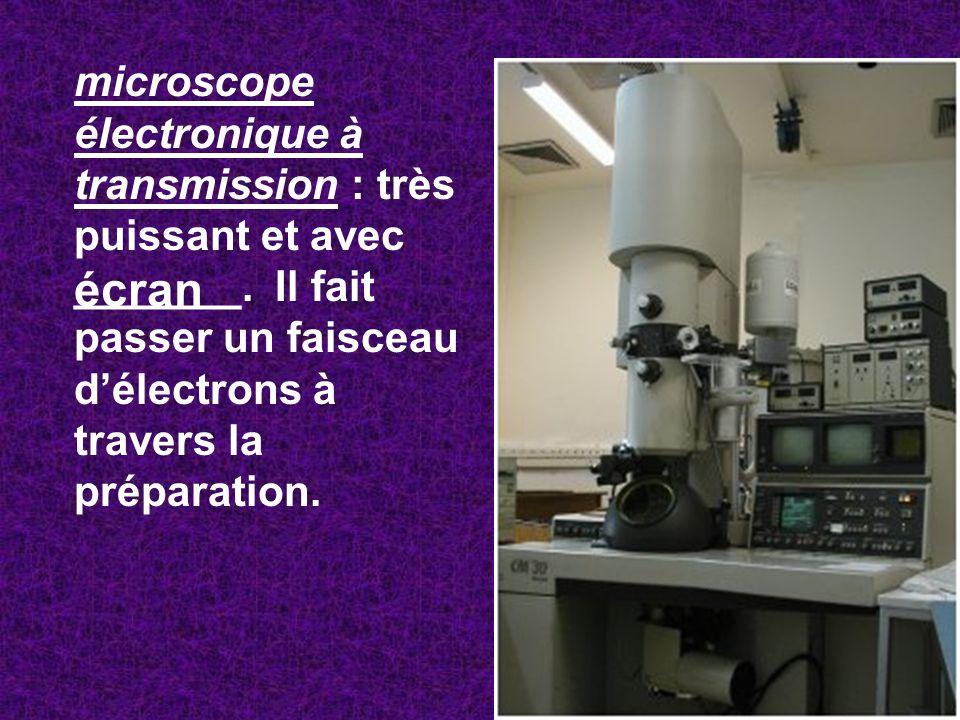 microscope électronique à transmission : très puissant et avec _______. Il fait passer un faisceau délectrons à travers la préparation. écran