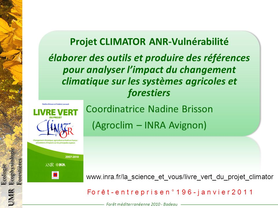 Forêt méditerranéenne 2010 - Badeau Projet CLIMATOR ANR-Vulnérabilité élaborer des outils et produire des références pour analyser limpact du changement climatique sur les systèmes agricoles et forestiers Coordinatrice Nadine Brisson (Agroclim – INRA Avignon) www.inra.fr/la_science_et_vous/livre_vert_du_projet_climator Fo r ê t - e n t r e p r i s e n ° 1 9 6 - j a n v i e r 2 0 1 1