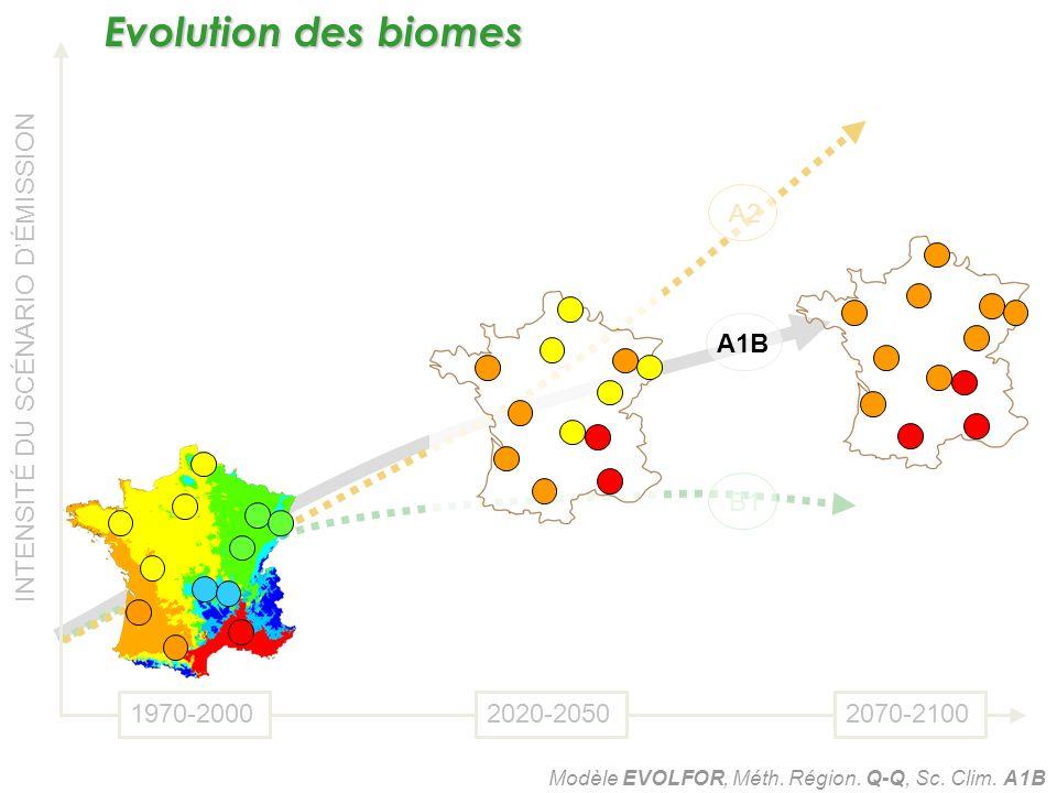 B1 A1B A2 INTENSITÉ DU SCÉNARIO DÉMISSION 1970-20002020-20502070-2100 Modèle EVOLFOR, Méth. Région. Q-Q, Sc. Clim. A1B Evolution des biomes