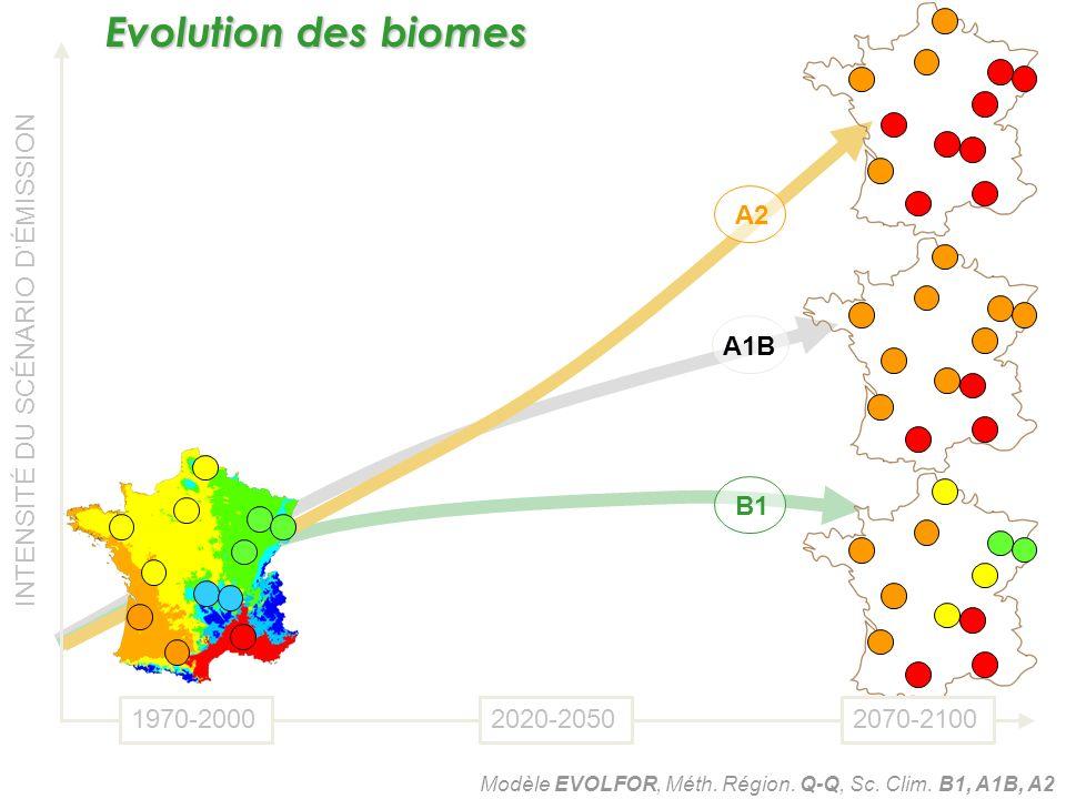 B1 A1B A2 INTENSITÉ DU SCÉNARIO DÉMISSION 1970-20002020-20502070-2100 Modèle EVOLFOR, Méth. Région. Q-Q, Sc. Clim. B1, A1B, A2 Evolution des biomes