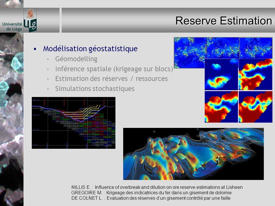 Reserve Estimation Modélisation géostatistique –Géomodelling –Inférence spatiale (krigeage sur blocs) –Estimation des réserves / ressources –Simulatio