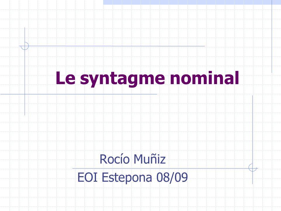 Le syntagme nominal (SN) Le syntagme nominal est un groupe de mots dont lélément central est un nom.