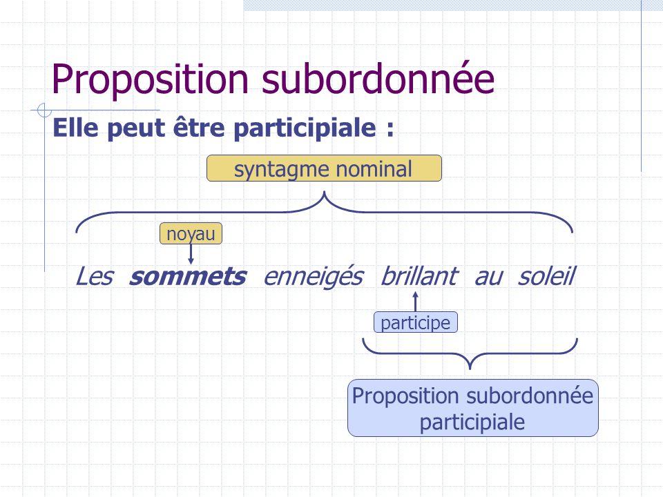 Les fonctions du SN Le SN peut assumer différentes fonctions grammaticales dans une phrase : sujet complément dobjet direct attribut du sujet…