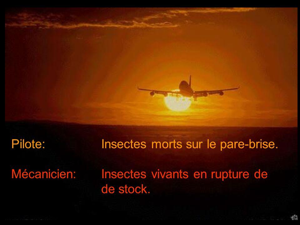 Pilote: Insectes morts sur le pare-brise. Mécanicien:Insectes vivants en rupture de de stock.