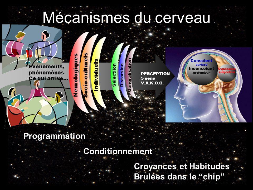 Mécanismes du cerveau Conscient surface Inconscient profondeur Expérience subjective PERCEPTION 5 sens V.A.K.O.G. Sélectiion Distorsion Généralisation