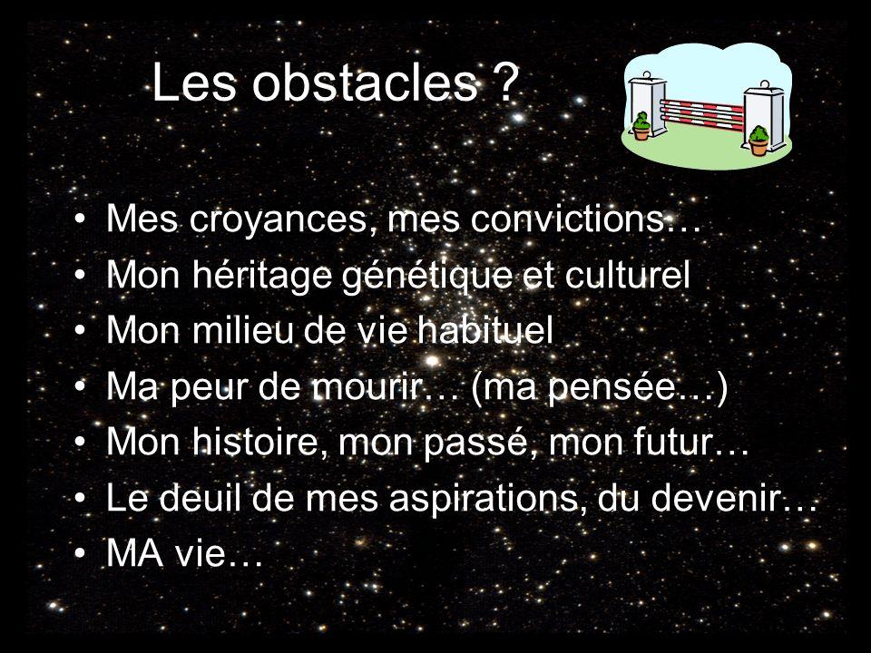 Les obstacles ? Mes croyances, mes convictions… Mon héritage génétique et culturel Mon milieu de vie habituel Ma peur de mourir… (ma pensée…) Mon hist