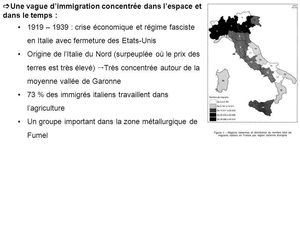 Une vague dimmigration concentrée dans lespace et dans le temps : 1919 – 1939 : crise économique et régime fasciste en Italie avec fermeture des Etats-Unis Origine de lItalie du Nord (surpeuplée où le prix des terres est très élevé) Très concentrée autour de la moyenne vallée de Garonne 73 % des immigrés italiens travaillent dans lagriculture Un groupe important dans la zone métallurgique de Fumel