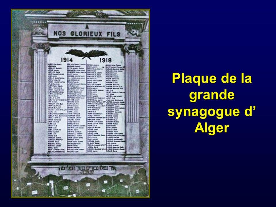 Sur 1 076 000 Français dits Pieds Noirs de 1944 il y eut 14 000 tués et 23 000 blessés depuis juillet 1943 (document 4Q119-et du Ministère des anciens combattants), soit un total pour libérer la France de 20 000 morts et 30 000 blessés.