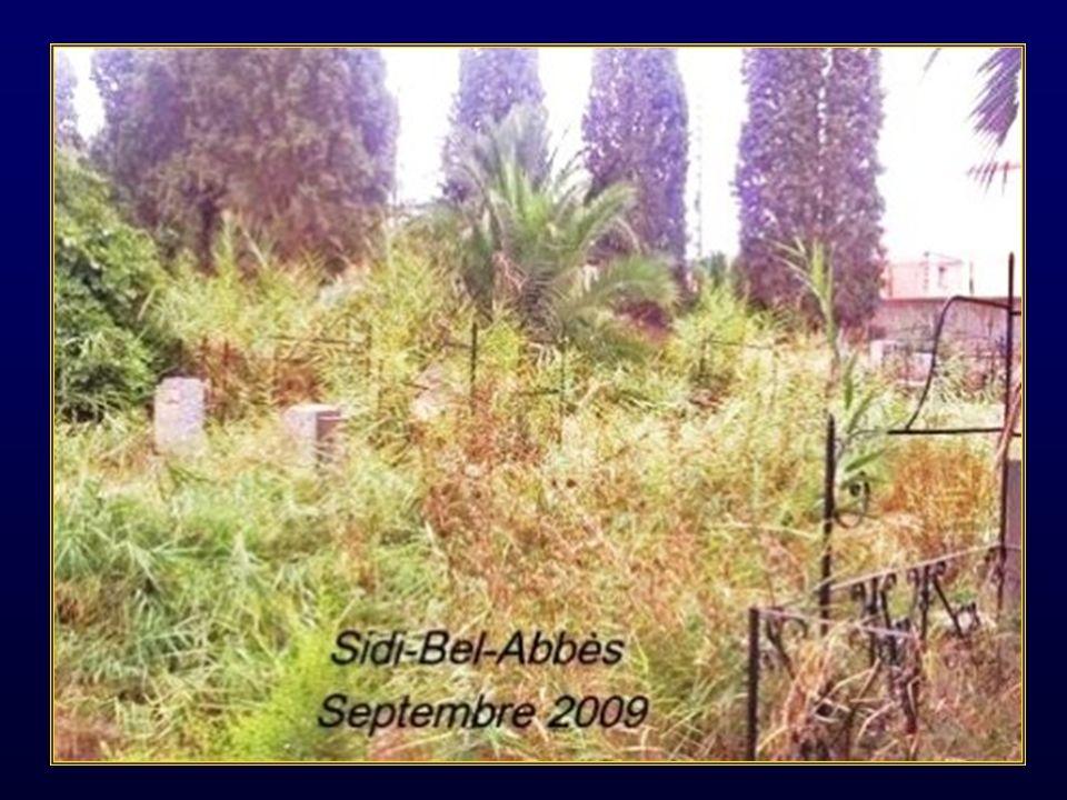 Dans la même ville voici ce qui reste, des cimetières où reposaient les ancêtres chrétiens ou juifs des 80 000 habitants nés ici depuis plus dun siècle.
