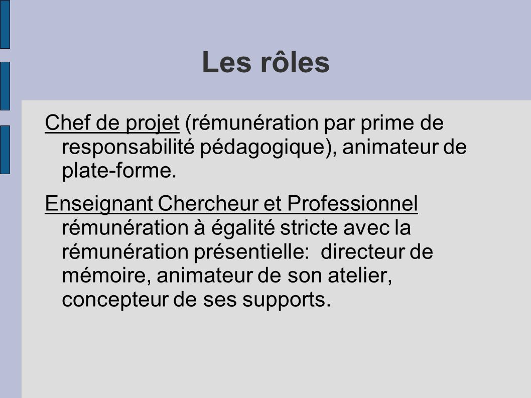 Les rôles Chef de projet (rémunération par prime de responsabilité pédagogique), animateur de plate-forme. Enseignant Chercheur et Professionnel rémun