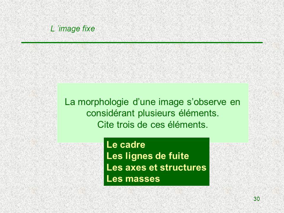 30 La morphologie dune image sobserve en considérant plusieurs éléments.