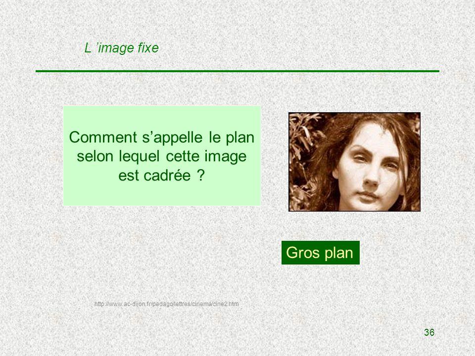36 Comment sappelle le plan selon lequel cette image est cadrée .