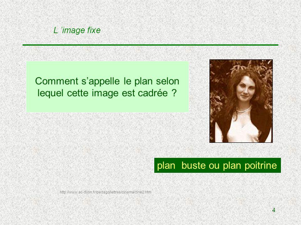 4 Comment sappelle le plan selon lequel cette image est cadrée .