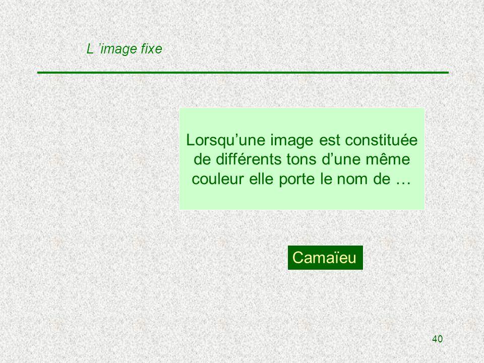 40 Lorsquune image est constituée de différents tons dune même couleur elle porte le nom de … Camaïeu L image fixe
