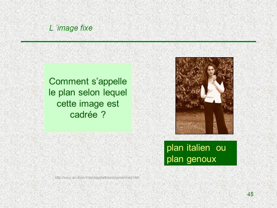 45 Comment sappelle le plan selon lequel cette image est cadrée .