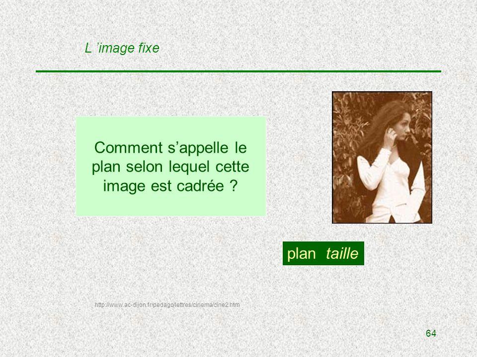 64 Comment sappelle le plan selon lequel cette image est cadrée .