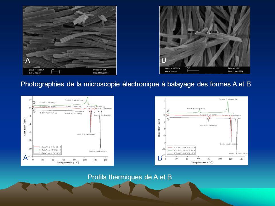 AB Profils thermiques de A et B Photographies de la microscopie électronique à balayage des formes A et B A B