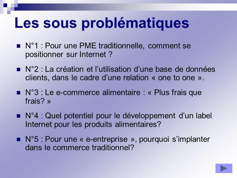 Les sous problématiques N°1 : Pour une PME traditionnelle, comment se positionner sur Internet ? N°2 : La création et lutilisation dune base de donnée
