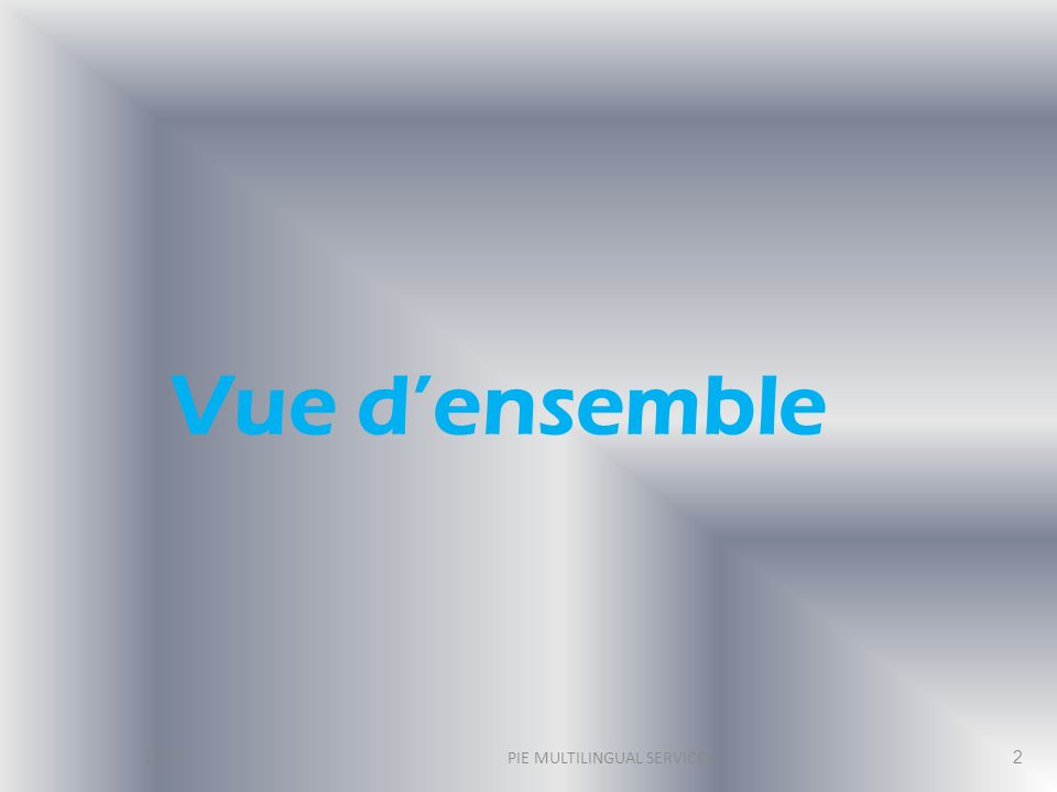 Vue densemble 2013 PIE MULTILINGUAL SERVICES 2
