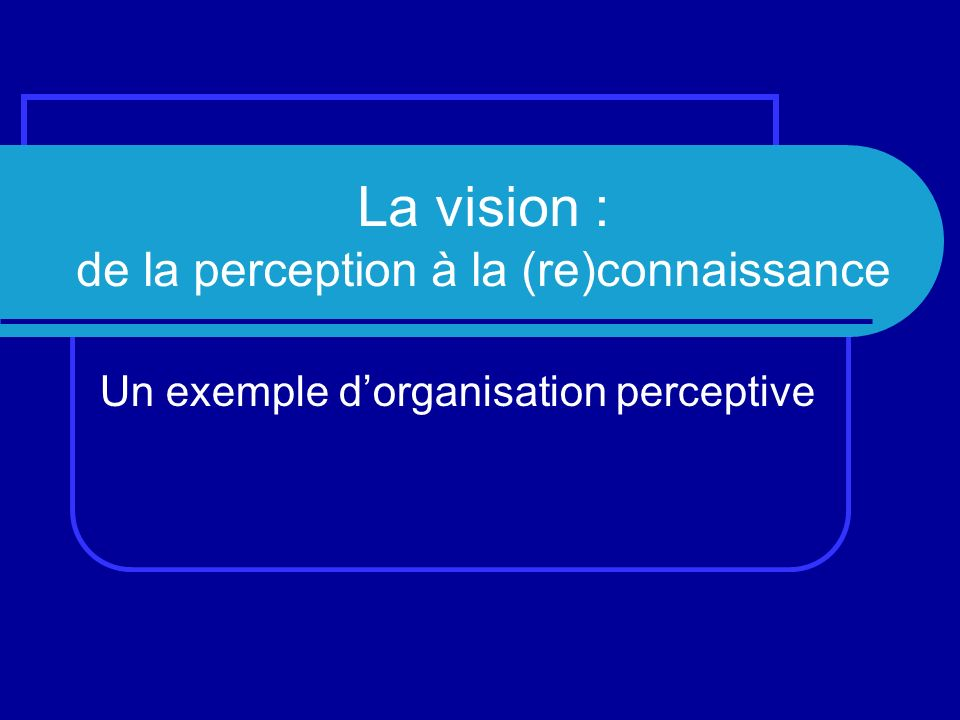 La vision : de la perception à la (re)connaissance Un exemple dorganisation perceptive