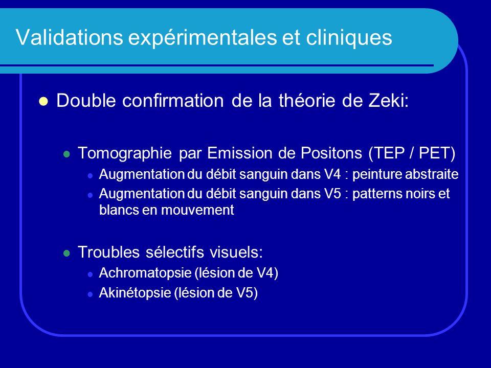 Validations expérimentales et cliniques Double confirmation de la théorie de Zeki: Tomographie par Emission de Positons (TEP / PET) Augmentation du dé