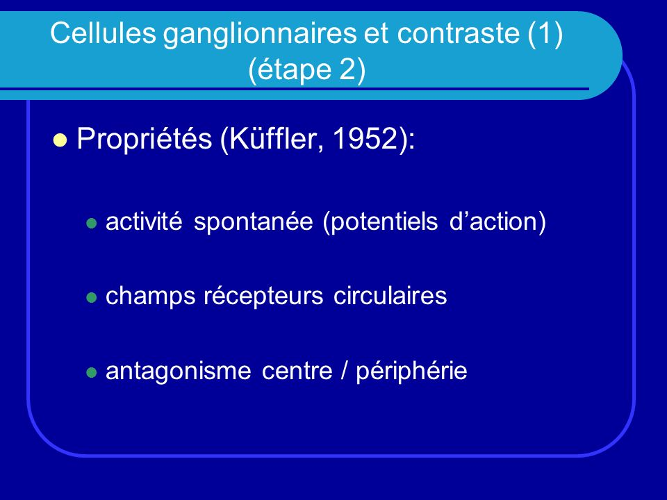 Trois types de cellules ganglionnaires Cellules X, P ou naines: vision des détails Cellules Y, M ou parasol: orientation du regard Cellules W, K: détection du mouvement Constat: dès la rétine, existence de « canaux » parallèles de traitement de linformation visuelle