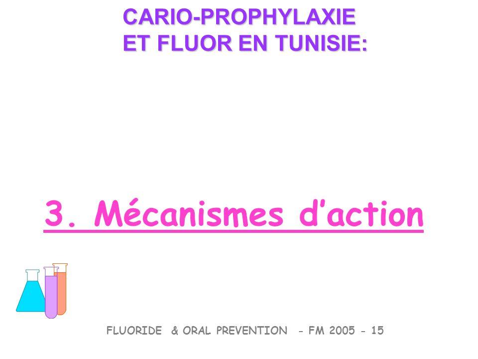 3. Mécanismes daction CARIO-PROPHYLAXIE ET FLUOR EN TUNISIE: CARIO-PROPHYLAXIE ET FLUOR EN TUNISIE: FLUORIDE & ORAL PREVENTION - FM 2005 - 15