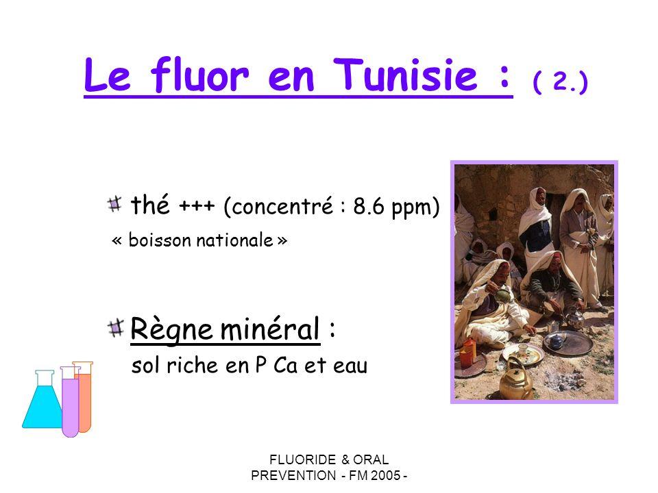 FLUORIDE & ORAL PREVENTION - FM 2005 - Le fluor en Tunisie : ( 2.) thé +++ (concentré : 8.6 ppm) « boisson nationale » Règne minéral : sol riche en P