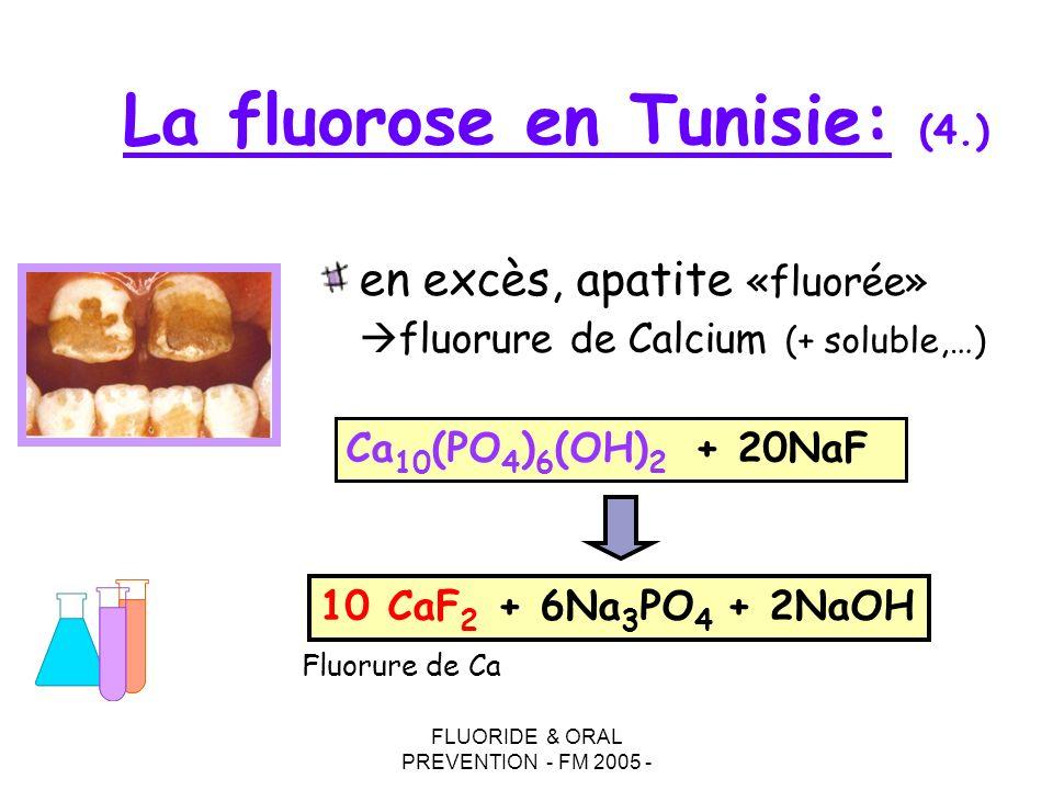 FLUORIDE & ORAL PREVENTION - FM 2005 - en excès, apatite «fluorée» fluorure de Calcium (+ soluble,…) Ca 10 (PO 4 ) 6 (OH) 2 + 20NaF 10 CaF 2 + 6Na 3 P