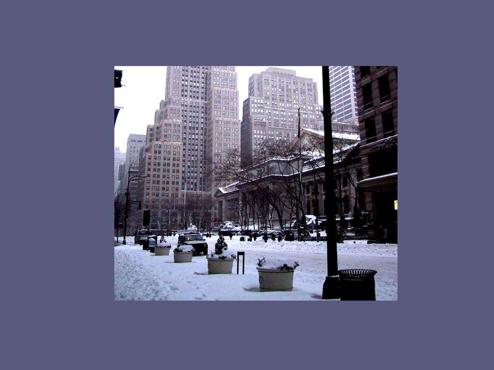 Boulevard René Lévesque en après-midi de la mi-janvier; non seulement le froid est toujours aussi vif et cinglant, mais la météo annonce rien de moins que 30 à 40 centimètres de neige.