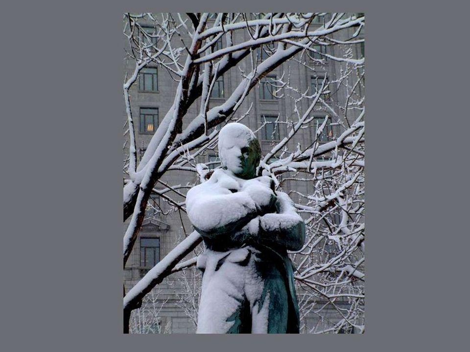A Montréal lhiver est un fléau qui sème la misère, la désolation et la maladie.